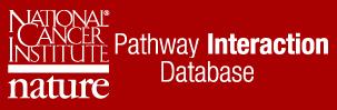 PathwayInteractionDatabase